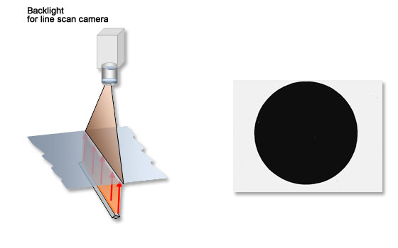 backlight for line scan cameras